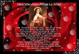 Oración para pedir la rosa