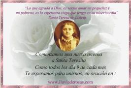 Tarjetas Web De Lluvia De Rosas Navega Por Las Categorías